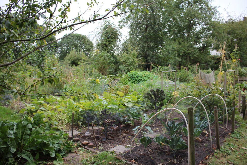 Uitzicht over tuinen