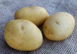 Pootaardappelen, Vitabella A maat 28/35, 1,38 kg (50stuks) - BIO